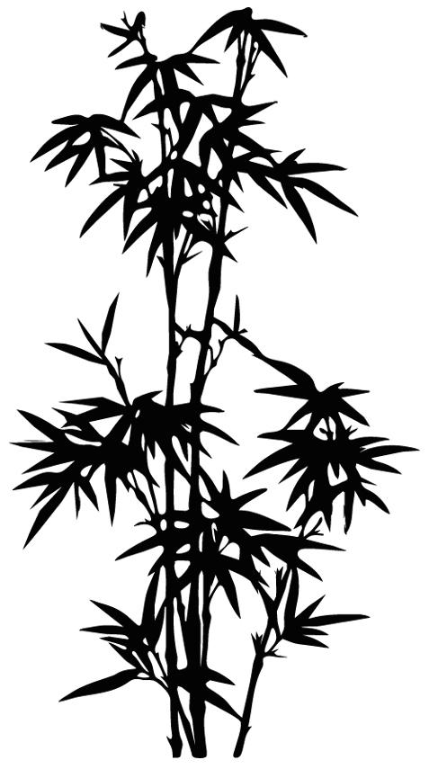 stickers bambou pas cher. Black Bedroom Furniture Sets. Home Design Ideas