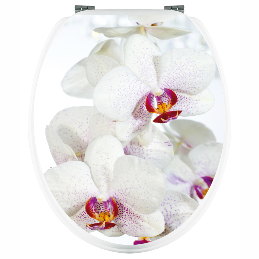 20 Accueil Stickers Pour Abattant Wc Orchidee Blanche Fr Pictures